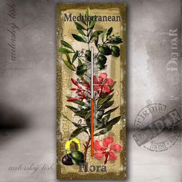 Teploměr flora středomoří