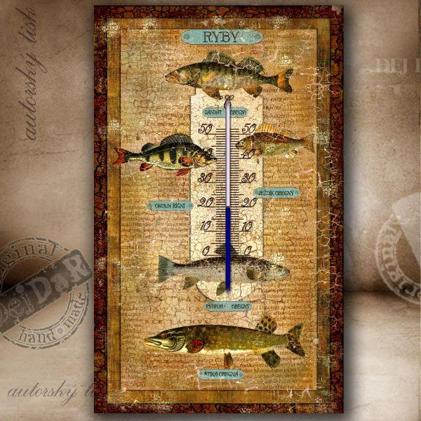 Teploměr pokojový ryby