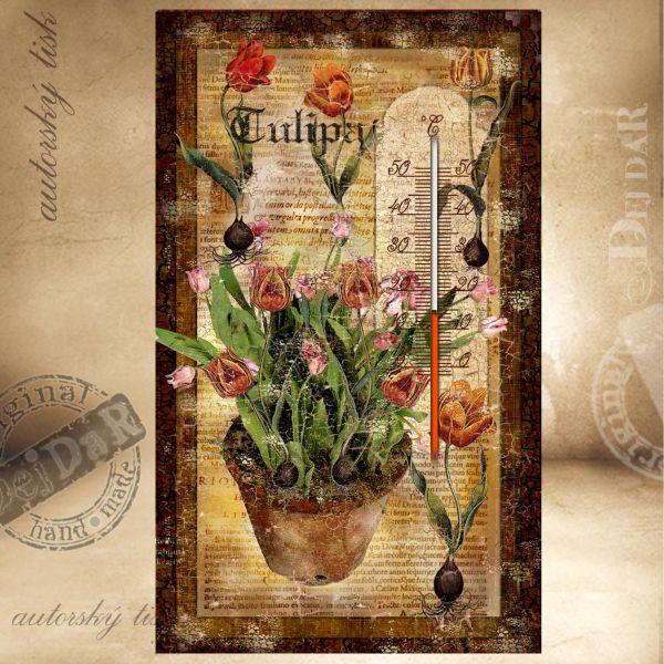 Teploměr pokojový tulipány II.