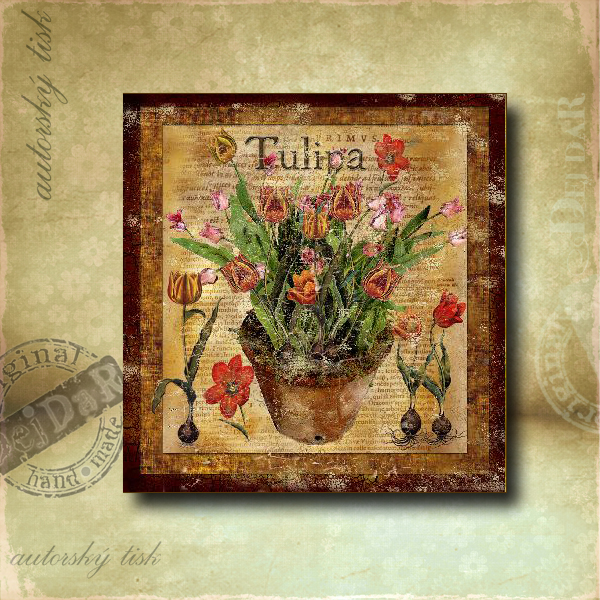 Obrázek čtvercový tulipány