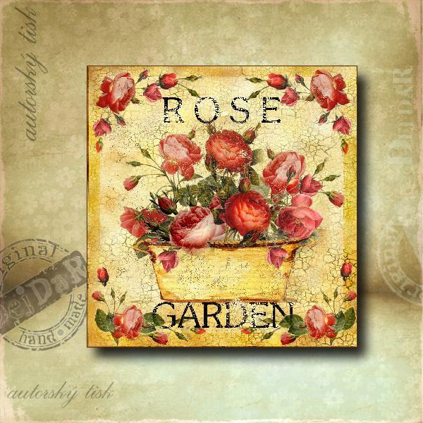 Obrázek čtvercový růže II.