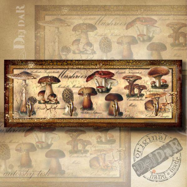 Věšák houby