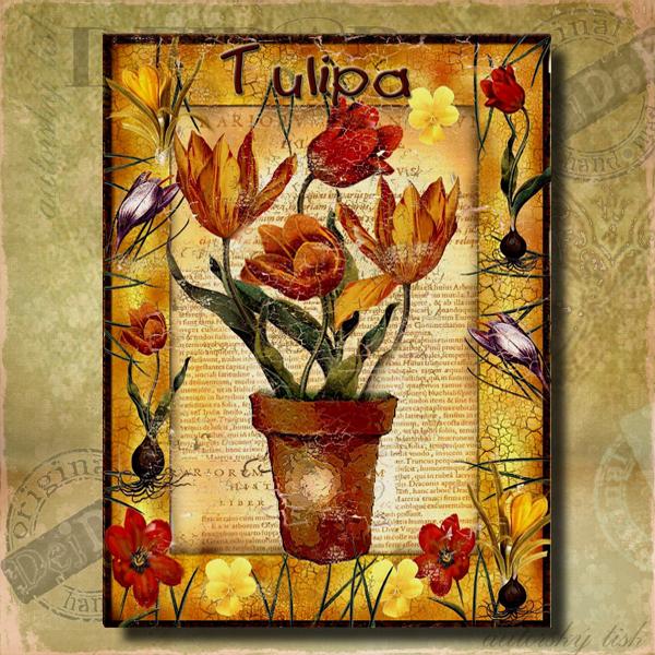 Obrazy tulipán