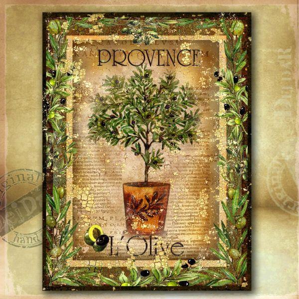 Obrazy olivy