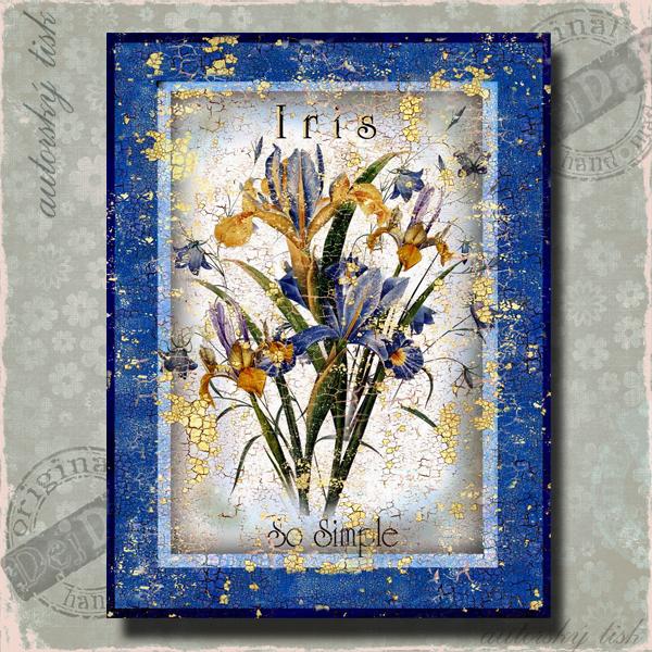 Obrazy modré květiny