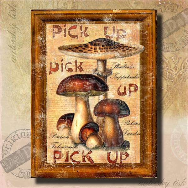 Obrazy houby