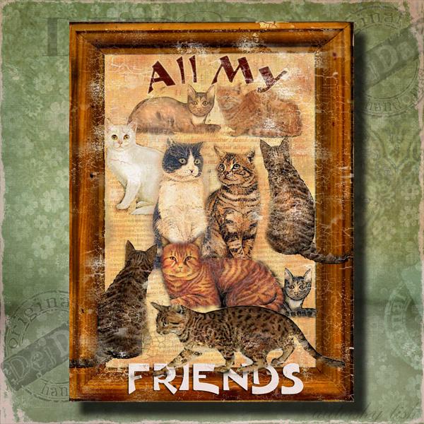 Obrazy kočky