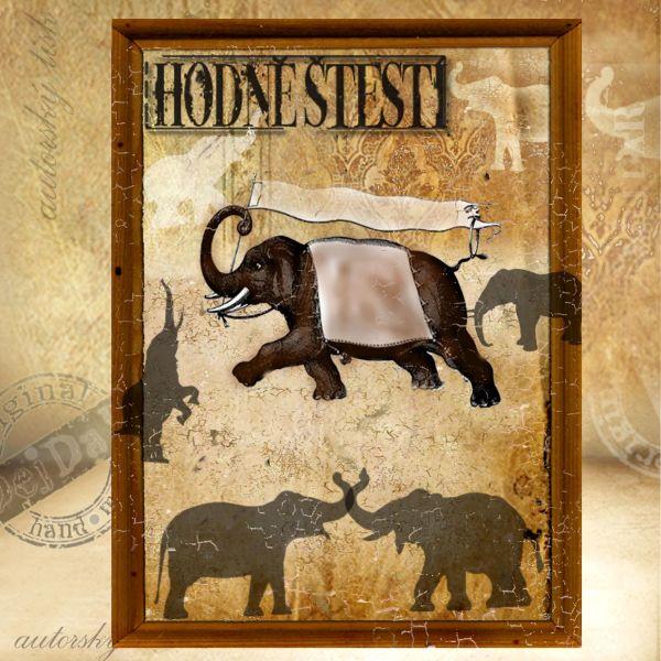 Obrazy sloni