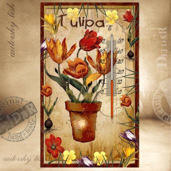 Teploměr pokojový tulipány I.