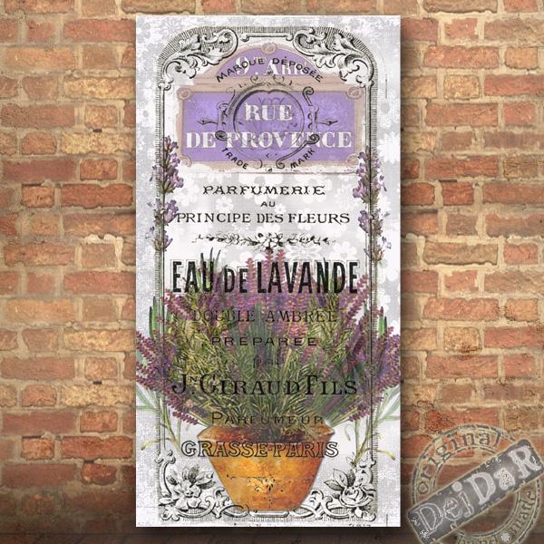 Nástěnný obrázek - Levandule provence 1