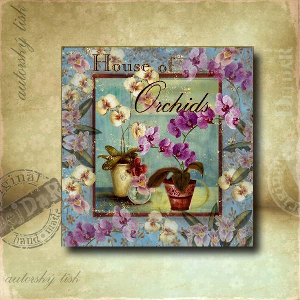 Obrázek čtvercový orchidej