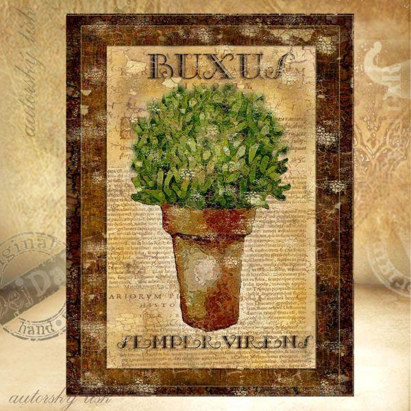 Obrazy buxus I.