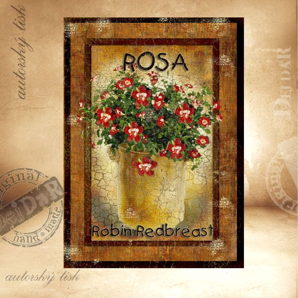 OM růže I.