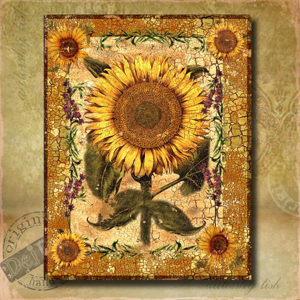 Obraz dekorace slunečnice I.