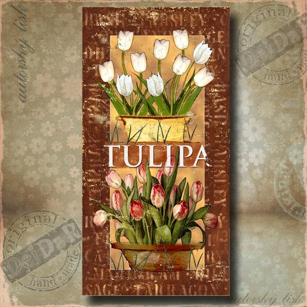 OP tulipán