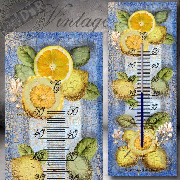 Teploměr citrony