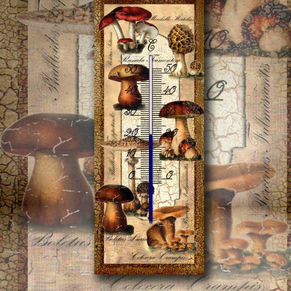 Teploměr houby